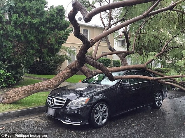"The Weather Had ""Cruel Intentions"" on a Mercedes"
