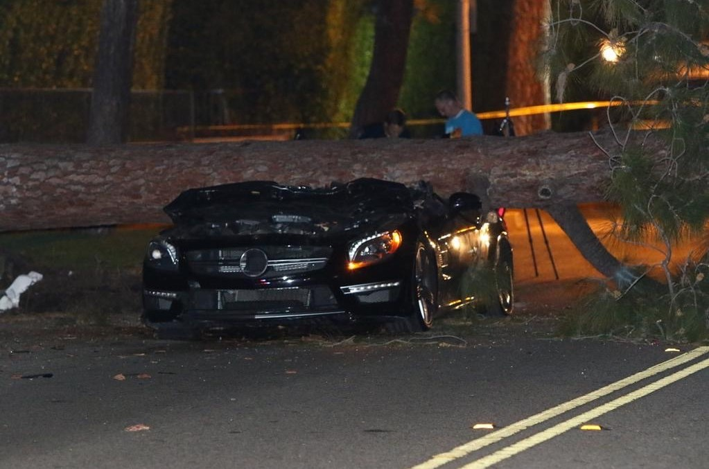 Driver miraculously survives after tree falls on his Mercedes. VIDEO