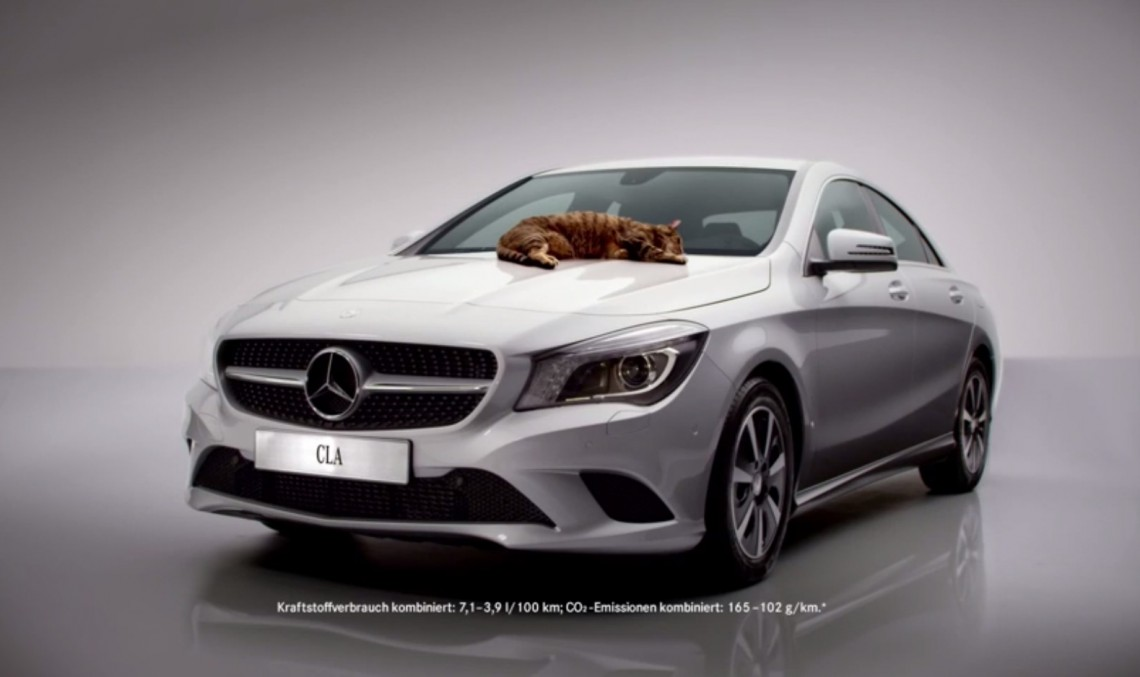 Technicians save tiny kitten stuck underneath a Mercedes-Benz CLA