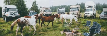 05-Mercedes-Benz-SleepOut-Pferde-auf-Besuch_1280x436-1280x436