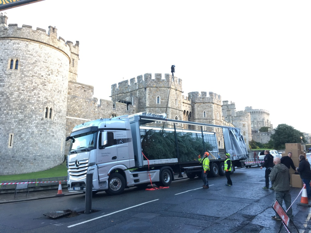 Royal Christmas Tree