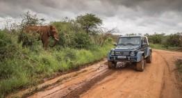 The new Mercedes-Maybach G 650 Landaulet goes on a safari