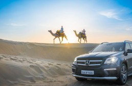 Mercedes-Benz:  the most interactive automobile brand