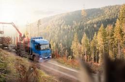 Mercedes-Benz Arocs: Good for the Wood