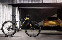 ROTWILD GT S mountain bike inspired by Mercedes-AMG GT