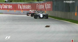 Oscars and rodents at the Canadian Grand Prix