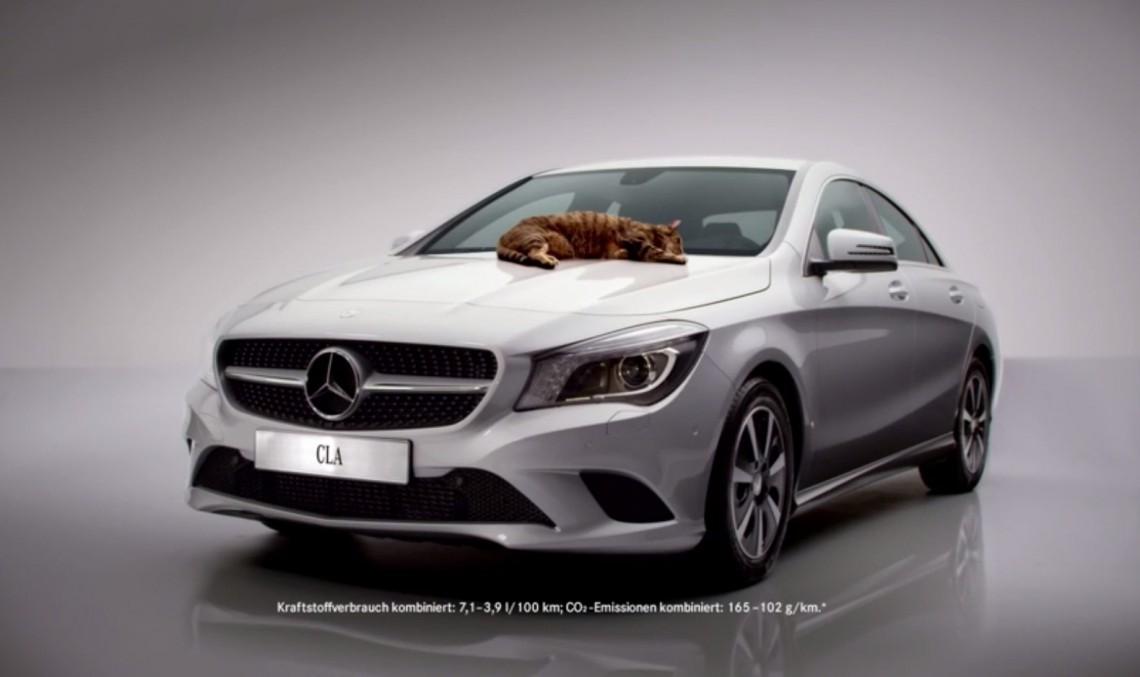 Technicians save tiny kitten stuck underneath a Mercedes-Benz CLA