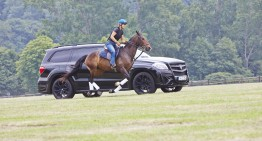 "The drag race of the century – Polo Horse vs ""Black Crystal"" Mercedes"