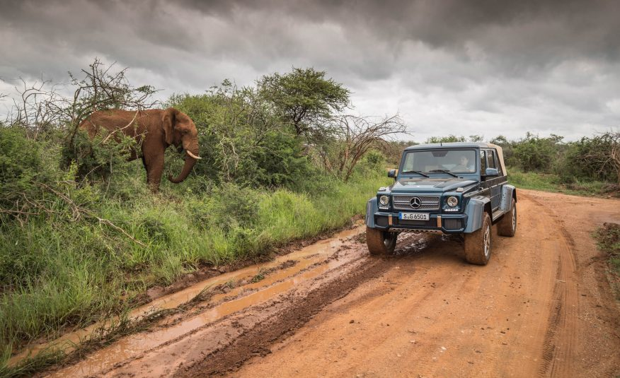 The new Mercedes-Maybach G 650 Landaulet goes on a safari