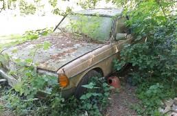 The greenest diesel: Barn find Mercedes W 123 grows a tree, still works