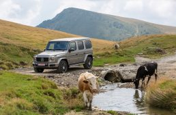Test drive Mercedes-Benz G 500 – The brute with good manners